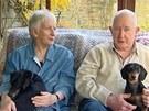 Majitelé jezevčíka Jaspera tvrdí, že se v pohybu už zase vyrovná svým zdravým...