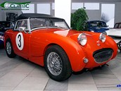 Muzeum aut v Lánech ve Středočeském kraji vystavuje sportovní vozy.