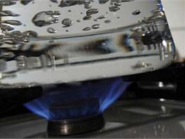 Bohemia Energy je největší alternativní dodavatel energií