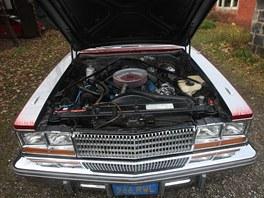 Cadillac Seville 1977 po renovaci klienty Slezsk� diakonie v �esk�m T��n�.