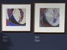 Několik studií, které Kupka namaloval před vznikem Amorf.