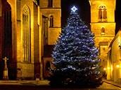 Vánoční jedle ojíněná na Velkém náměstí v Hradci Králové