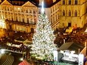 Vánoční smrk na pražském Staroměstském náměstí