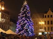 Vánoční strom na Benešově náměstí v Liberci