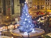 Smrk na náměstí Republiky v Plzni