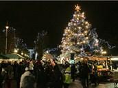 Karlovarský vánoční strom