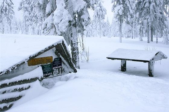 Sněhem zasypaný vrchol Smrku