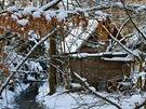 Chaty vpřírodní rezervaci Krkanka stojí na břehu řeky, která vyhloubila ve