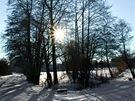 Stromy u cesty do Nasavrk