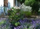 zahrada Schneider