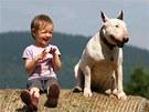 Soužití dítěte a psa má být radost (jako na snímku). Jen musí dospělí