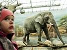 V zoo ve Dvoře Králové nad Labem bylo o Vánocích plno (24. 12. 2012)