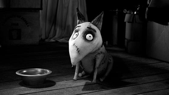 Z filmu Frankenweenie: Dom�c� mazl��ek
