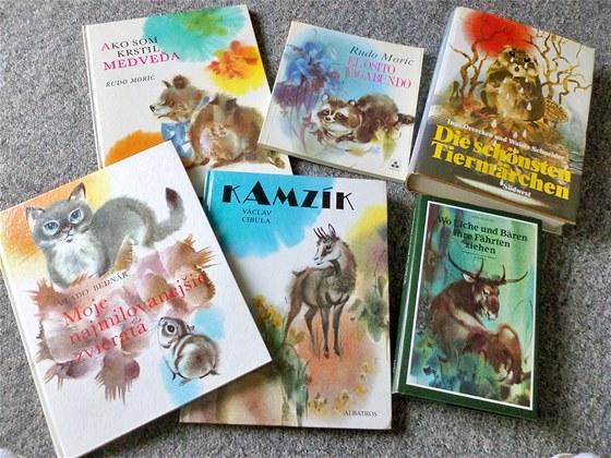 Kniha Kamzík