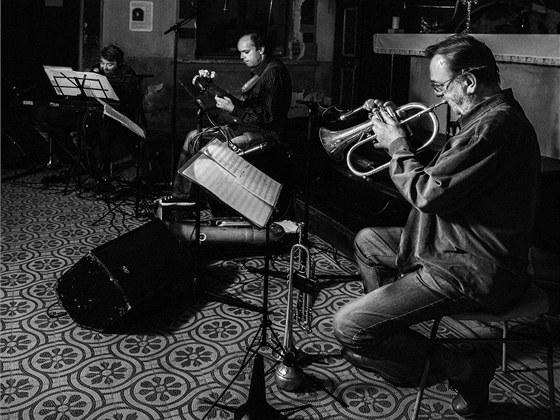 Jan Sp�len� Trio p�i koncertu ve Skok�ch (zleva Jan Sp�len�, Filip Sp�len�,