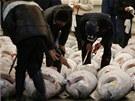První letošní aukce tuňáků v Tokiu (5. ledna 2013)
