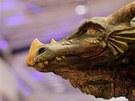 Výstava Bájná země draků v nákupním centru Olympia v Modřicích.