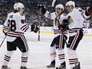 DOBRÝ START. Hokejisté Chicaga slaví gól, který proti Los Angeles vstřelil