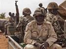Maliská armáda bojuje s islamisty všemi možnými prostředky. Na snímku...