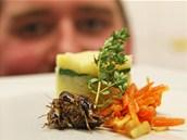 Dobrou chuť. Cvrčci s brambory a zeleninovou přízdobou.
