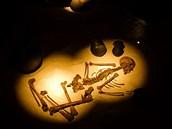 Ukázka pravěkého pohřbívání v muzeu ve Všestarech. (15. 1. 2012)