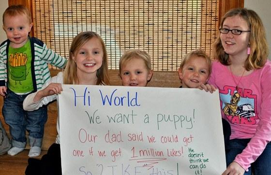 Holčičky na Facebooku žádaly o milion lajků, aby jim tatínek dovolil koupit
