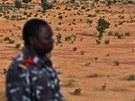 Mezinárodní federace lidských práv (FIDH) viní maliské vojáky z násilností.