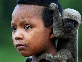 Hoch z kmene Nukak Maku v Kolumbii