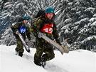 Extrémní armádní závod Winter Survival napříč Jeseníky