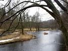 Řeka Moravice v Nízkém Jeseníku