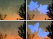 Samolepky s UV filtrem: vlevo jak je vnímá lidský zrak, vpravo jak je vidí...