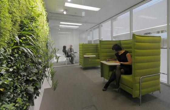 Living rooom se zelenou st�nou