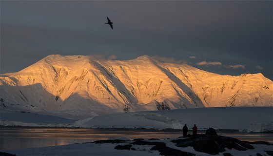 Nejvyšší hora Grahamovy země, 2 600 m vysoká Mt. Francis