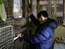 Nejchudší obyvatelé Hongkongu žijí v klecích o rozměrech 1,5 čtverečního metru