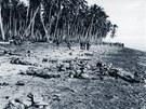 Bitva o tichomořský ostrov Guadalcanal si vyžádala životy více než šet a půl