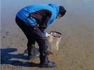 Badatel sbírá ve vodě vzorky pro svůj výzkum.
