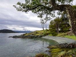 Pobřeží v NP Tierra del Fuego