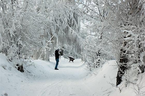 Zimní idylka cestou zKomorní Lhotky na Malou Prašivou