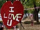 Valentýnská výzdoba v centru Islámábádu. (14. února 2013)
