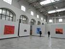 Tomáš Císařovský a Erika Bornová zahájili v brněnské Wannieck Gallery společnou