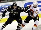 HL�D�M SI T�. Roman Hor�k z Calgary (vpravo) br�n� Jamieho Benna z Dallasu.