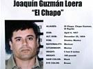 Hledaný číslo jedna, Joaquín Guzmán.