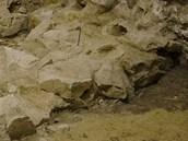 Koruna zdi je přímo pod současnou podlahou.