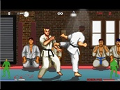 Karate Master Knock Down Blow