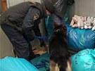 Zásah inspekce v souvislosti s distribucí steroidů ve věznici Mírov.