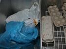 Dva bratři z Vyškovska prodávali drogy.