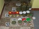 Dva brat�i z Vy�kovska prod�vali drogy.