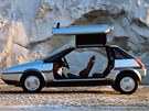 Dveře otevírané vzhůru byly v roce 1983 zase populární: Giugiarův koncept