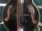 Odcizená mandolína, jejíž hodnota se pohybuje okolo padesáti tisíc korun.