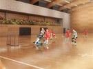 Vedle hlavní haly bude menší, takzvaná tréninková hala, která má však sloužit i